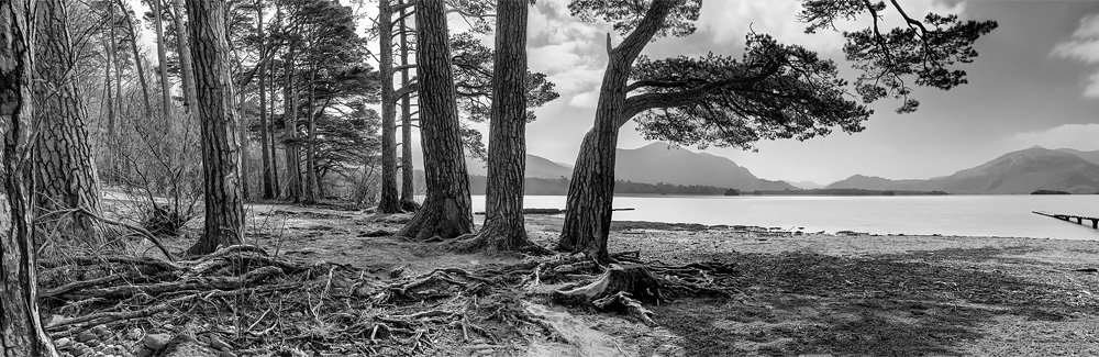 Lough Leane kerry black and white landscape photo