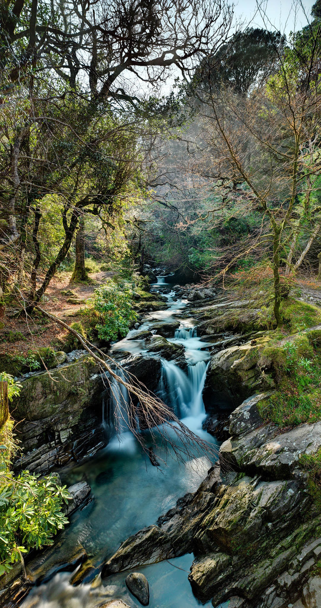 Killarney National Park waterfall forest photo