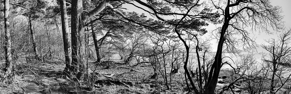 Lough Leane Killarney fine art landscape photo