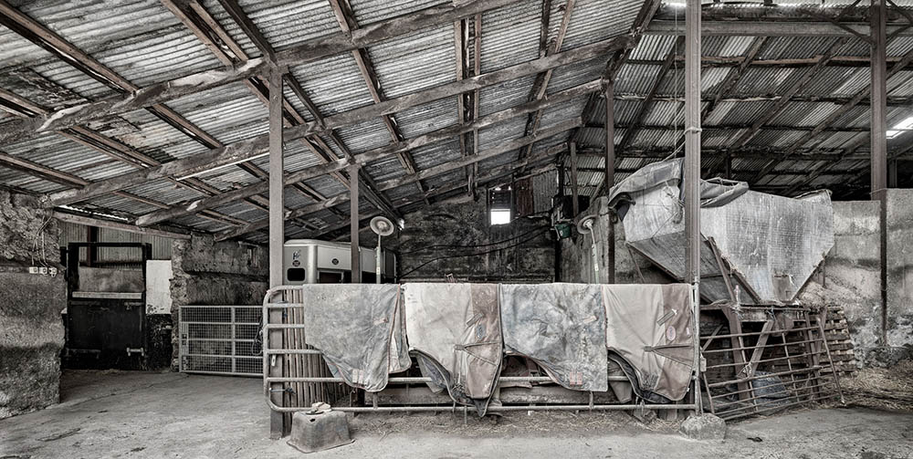 fine art industrial horse-Stud farm sheds